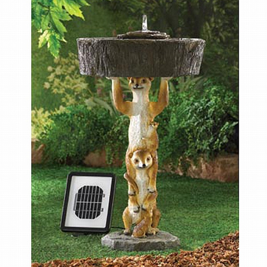 enchanting solar fountain