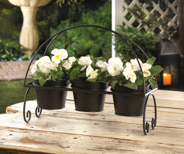Elegant Black Planter